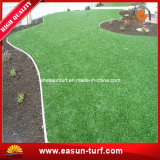 يرتّب زخرفة عشب اصطناعيّة لأنّ زخرفة حديقة