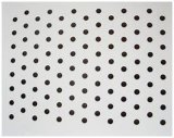 Perforierte Aluminiumdeckenverkleidung (A1050 1060 1100 3003 5005)
