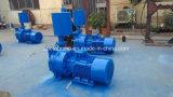Ring-Vakuumpumpe der Serien-2BV flüssige mit Wasserabscheider