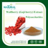 Qualitäts-Hersteller Wolfberry Polysaccharid-Puder 40%