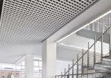 Moderne Buiten Decoratief van het Ontwerp van het Plafond van de Tegels van het Net Perforted
