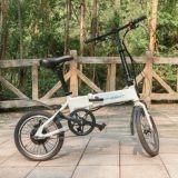 """14 """" 페달 지원을%s 가진 인치 알루미늄 합금 접히는 E 자전거"""