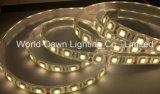 IP65 indicatore luminoso di striscia di alta luminosità LED con approvazione del Ce per SMD5050