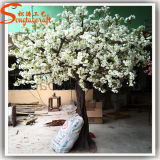 인공적인 벚꽃 나무가 5f에 의하여 장식 섬유유리 집으로 돌아온다