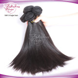 Jungfrau-Haar-Verwicklung-freies seidiges gerades malaysisches Haar