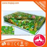 Labirinto dell'interno del campo da giuoco della foresta del castello speciale del parco a tema