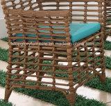 Tabella pranzante di svago della mobilia del giardino esterno moderno del rattan e presidenze di vimini (TG-1303)