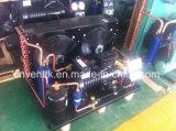 Unidad refrescada aire del condensador de la baja temperatura