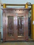 Farben-Edelstahl-Tür (S-3010)