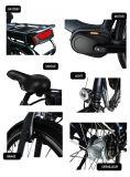 36V 250Wの強力なEバイクの長距離の電気バイク