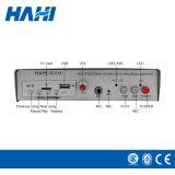 12V-48V 직업적인 증폭기 힘 입체 음향 증폭기 차 오디오 증폭기 (618)