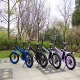 bicicleta elétrica da potência verde de 48V 500W com bateria de lítio Rseb507