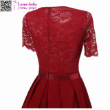 Sexy Vintage Summer Lace Round Neck manches courtes princesse femme robe