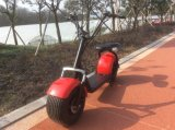 ISO9001 motorino elettrico di Citycoco della rotella di prezzi attraenti 2 con il certificato del EEC