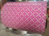 Patrón personalizado Pre-Painted bobinas de acero galvanizado de China Proveedor