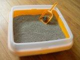 낮은 먼지 강한 응집 공 벤토나이트 고양이 배설용상자