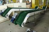 Geneigte kletternde Plastikförderanlage mit befestigtem Riemen