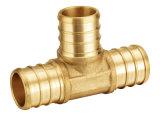 Encaixes de bronze da inserção de Pex dos encaixes