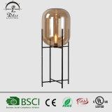 De moderne Oda van de Staand lamp van het Glas van de Staand lamp van de Decoratie van het Huis Decoratieve Grote Verlichting van de Vloer