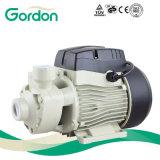 Gardonの電気真鍮のインペラーのSsシャフトが付いている周辺水ポンプ