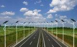20W 6m Solar-LED Straßenlaternemit Polen DC12V/24V