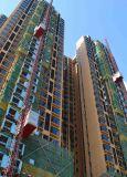 Grue d'ascenseur d'élévateur de construction de construction
