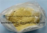 Trenbolone Enanthate 200mg injizierbare Puder-Steroide Raws Quellen