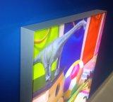 Materia textil del marco del cartel de Frameless que hace publicidad del rectángulo ligero