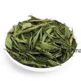 Stevia della polvere di Sucralose di alta qualità di 600times Sweeteness