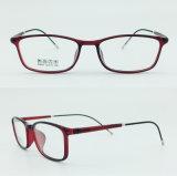 공장 인기 상품 최고 가벼운 절반 플라스틱 강철 형식 새로운 디자인 광학적인 안경알 Eyewear 프레임