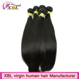 Xbl Brand Wholesale Indian Virgin Human Remy Hair