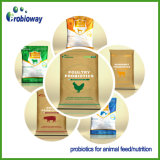 Alimentation du bétail ruminant OEM Probiotiques additif Agent acidifiant vitamine