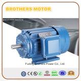 1.5kw 2.2kw 3kw 5kw 7.5kw 10kw 12kw 15kw con il motore asincrono elettrico a tre fasi di CA