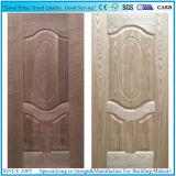 Pelle di legno del portello modellata HDF dell'impiallacciatura del comitato del portello del materiale da costruzione