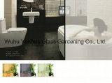 vetro glassato di 4mm-15mm per la doccia