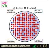50W UFO Growing LED Light for plans Growth
