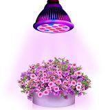 Interno ou Desktop planta o melhor do diodo emissor de luz crescem a luz