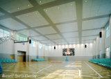 中国製- PVCバスケットボールおよびスポーツホールのための木の表面カラー床