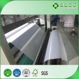 Китай наиболее передовых PE производителями бумаги с покрытием