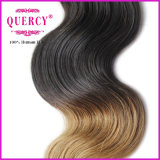Trama all'ingrosso dei capelli di prezzi di fabbrica, capelli umani brasiliani dei capelli di colore di Omber