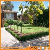 Nuovo tipo paesaggio decorativo del bordo del giardino