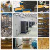Máquina industrial industrial do desidratador da fruta do desidratador do alimento do secador de bandeja