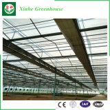 Xinhe Fabrik-Plastikfilm für Gewächshaus, leicht zusammengebautes Glasgarten-Gewächshaus