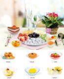 식기 플라스틱 디스크 처분할 수 있는 접시 소형 팬 모양 접시