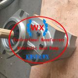 385-10234561/385-10079282/385-10490971 Komatsu 로더 530b-1/530-1/Jh80c-1를 위한 유압 기어 펌프