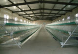 Light Prefabricated Steel Structure Chicken Poultry House (KXD-CH1503)