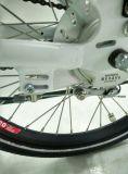 Motor central para la bici plegable eléctrica de 20 pulgadas