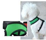 Harnais flexible coloré pour animaux de compagnie Dog Dog (hns4004)