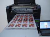 A3 печатная машина логоса размера цветастая UV СИД для пластмассы