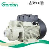 Pompe à eau périphérique domestique électrique à laiton avec pièce de fonte